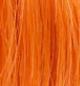スパニッシュオレンジ
